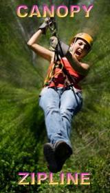 Selvatica canopy tour discount price