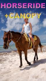 Horse back ride tour discount price