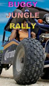 Buggy jungle rally tour with discount price
