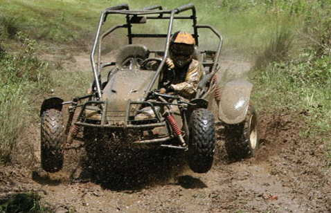 jungle buggy 4x4