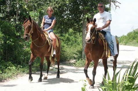 Selvatica horse backriden