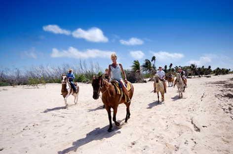 horseback beach excursion