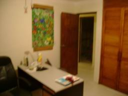 iguana06.jpg
